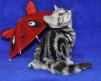 Британский котенок-лучший друг и подарок маленькая