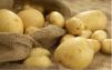 Продам картофель нового урожая маленькая