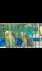 Продам папугаев маленькая