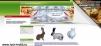 Продажа крольчат мясных пород маленькая