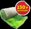 Рулонный газон в Краснодаре производство маленькая