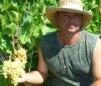 Саженцы и черенки винограда почтой по всем регионам маленькая