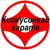 Секция киокусинкай карате в северном маленькая