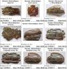 Сувенирные изделия:: магниты, тарелочки, сувениры, брелоки, барельефы маленькая