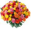 Цветы Розы76 маленькая