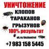 Уничтожение любых насекомых. Красноярский край маленькая