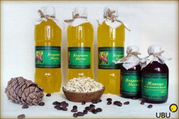 Кедровое масло приготовление в домашних условиях