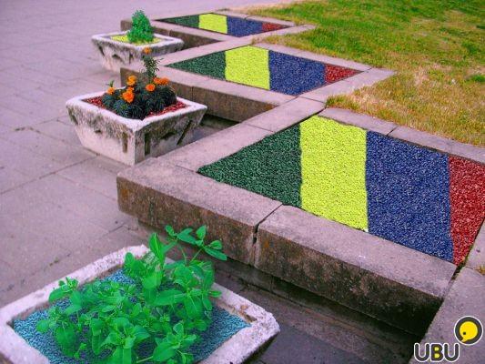 Фото цветов гравия