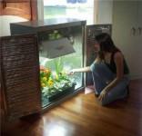 Обьявление Собираем на заказ оборудование для выращивания растений по немецким и голландским технологиям. Grow Box, Grow Room и Grow Greenhouse — Выращивать растения зимой и круглогодично легко!