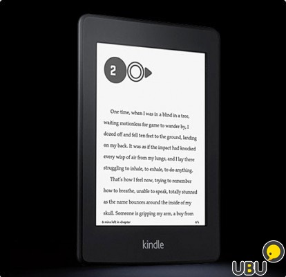 Amazon Kindle Paperwhite (5 generation)
